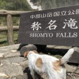称名滝にでかける