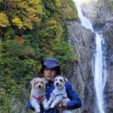 秋の称名滝は紅葉真っ盛り